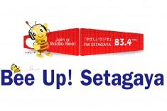 setafm-01